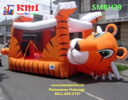 smbh29 copy