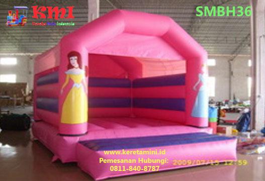 smbh36 copy